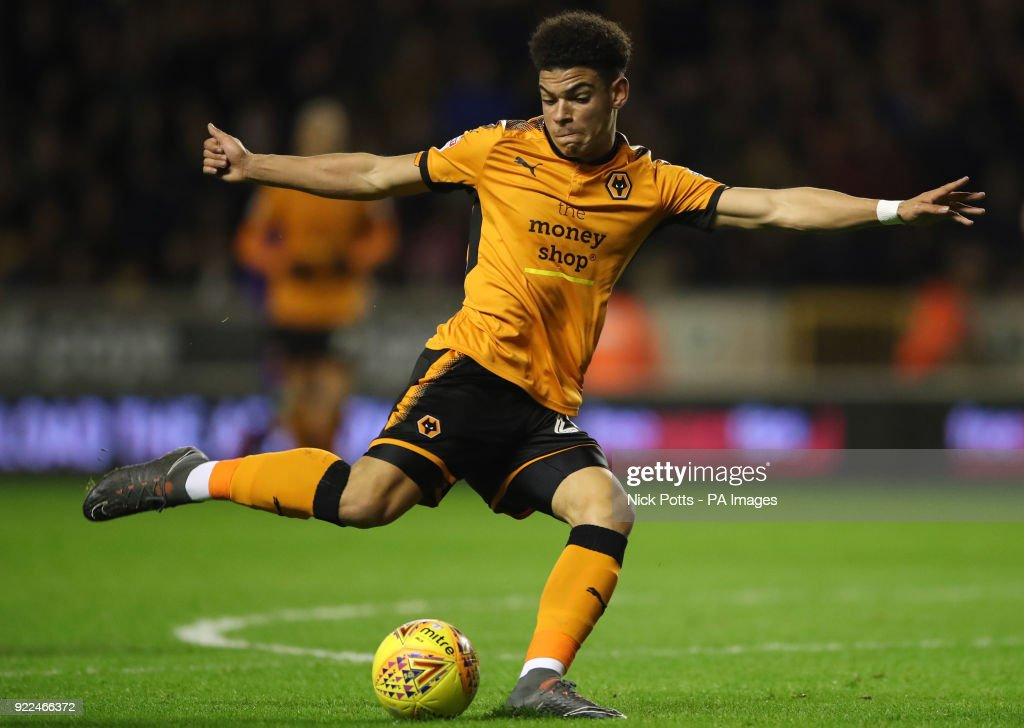Wolverhampton Wanderers v Norwich City - Sky Bet Championship - Molineux : ニュース写真