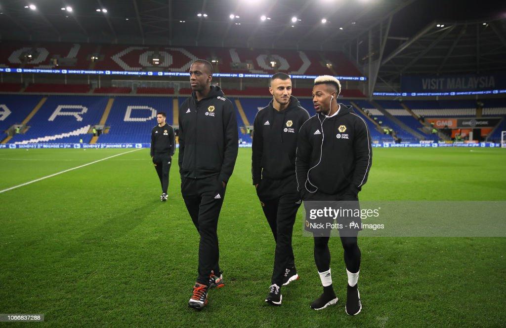 Cardiff City v Wolverhampton Wanderers - Premier League - Cardiff City Stadium : News Photo