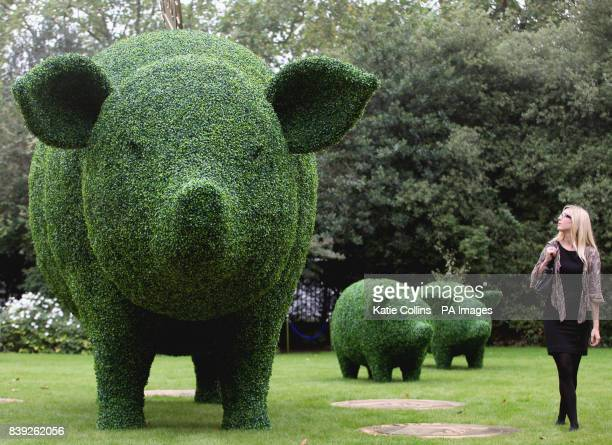 A woman admires a giant green piggy bank on display at the 'Garden Party To Make A Difference' media launch at Clarence House London