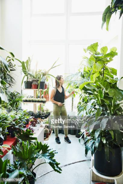 Woman admiring plants while shopping in plant shop