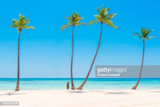 woman admiring the view from a tropical beach, dominican republic - punta cana fotografías e imágenes de stock
