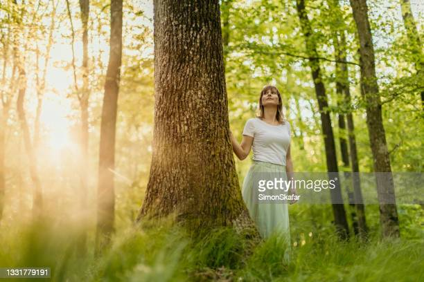 woman admiring view in forest - moment of silence stock pictures, royalty-free photos & images