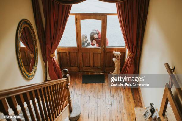 woman and a child arrive at a front door and an excited dog jumps up on the door, welcoming them. - returning stock pictures, royalty-free photos & images