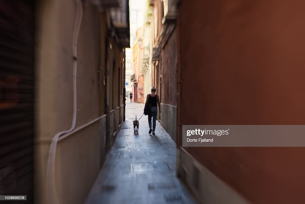Woman and a dog walking in a very narrow alley : Foto de stock