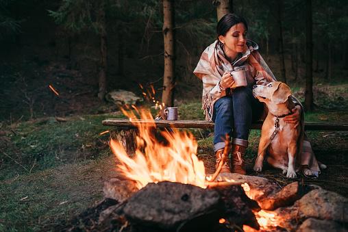 Woman and beagle dog warm near the campfire 692670662