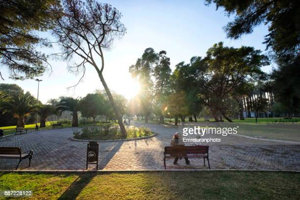 woman and boy sitting at the park ar sunset in izmir. - emreturanphoto stock pictures, royalty-free photos & images