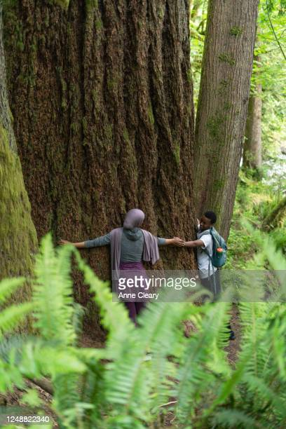 Woman and brother hugging old growth tree while exploring forest together