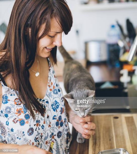 woman and cat at the kitchen - feeding stock pictures, royalty-free photos & images