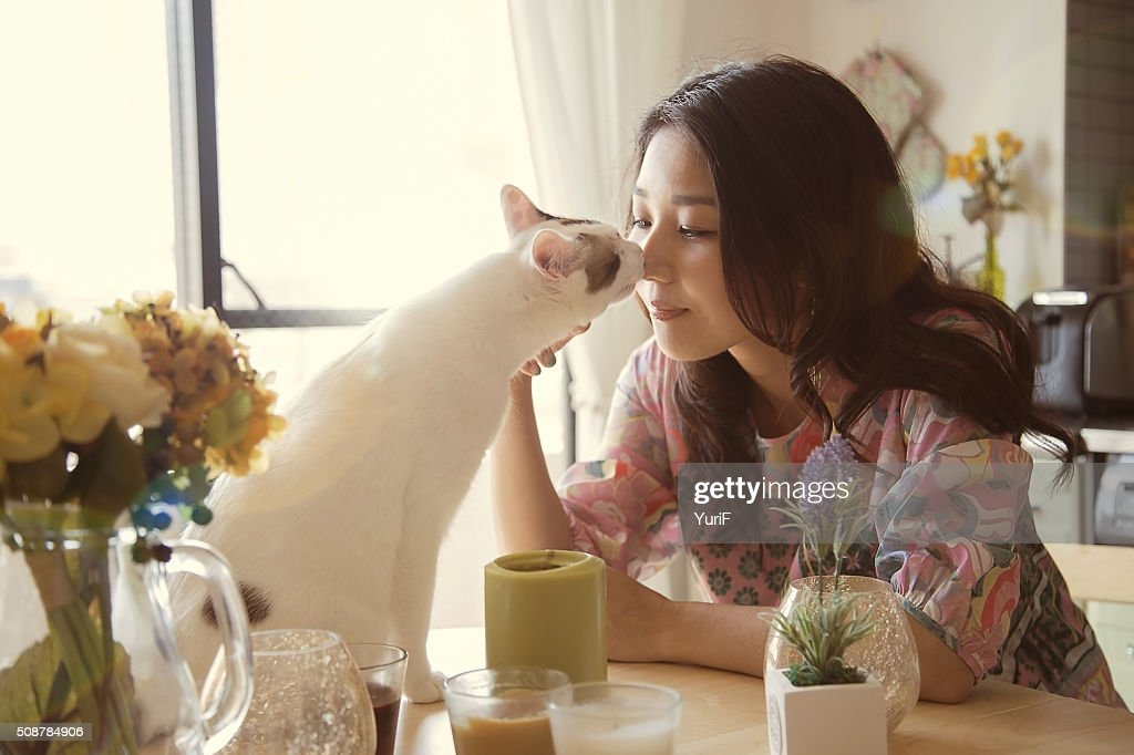 Woman and cat kissing. : Stock Photo