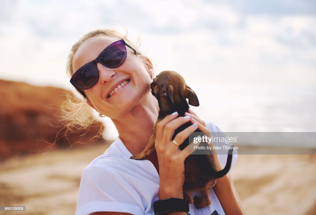 Woman and Chihuahua : Foto de stock