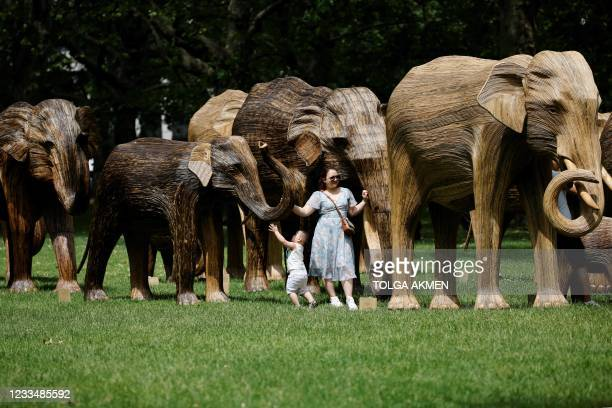 Woman and child examine life-size sculptures of a herd of Asian elephants set up by the Elephant Family and The Real Elephant Collective to help...
