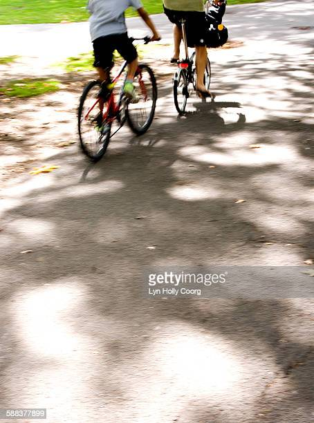 woman and child on bicycles in park - lyn holly coorg stock pictures, royalty-free photos & images