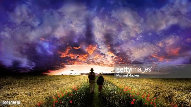 Woman and child walking on a path flanked by poppy flowers through the middle of a corn field, sunset with a cloudy sky, Adelschlag, Bavaria, Germany