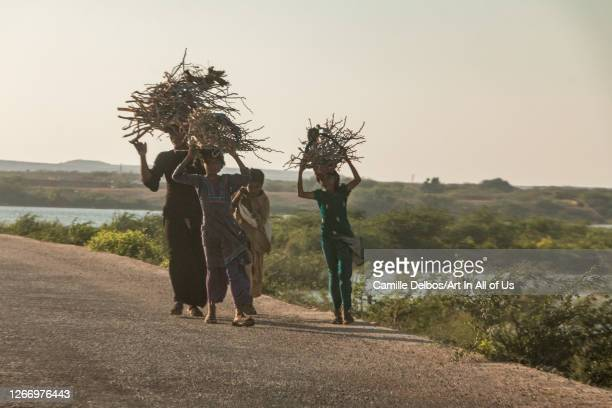 Woman and children carrying hardwood and their heads walking on the roadside on Avril 21, 2016 in Thatta, Sindh, Pakistan.