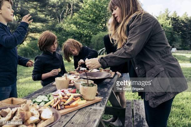 woman and children enjoying healthy food at outdoor party - voorgerecht stockfoto's en -beelden
