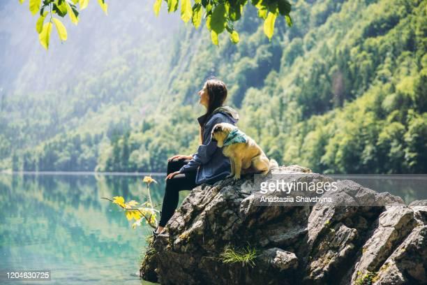 vrouw en hond die van de heldere de zomerzonsopgang bij mooi bergmeer in beierse alpen genieten - beieren stockfoto's en -beelden