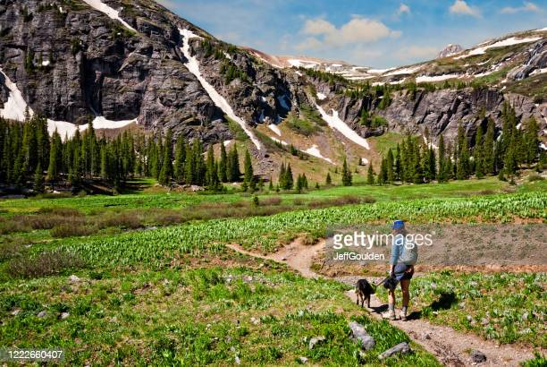 woman and dog hiking to upper ice lakes basin - jeff goulden stock pictures, royalty-free photos & images