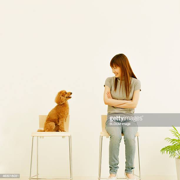 woman and dog looking at each other - caniche toy photos et images de collection