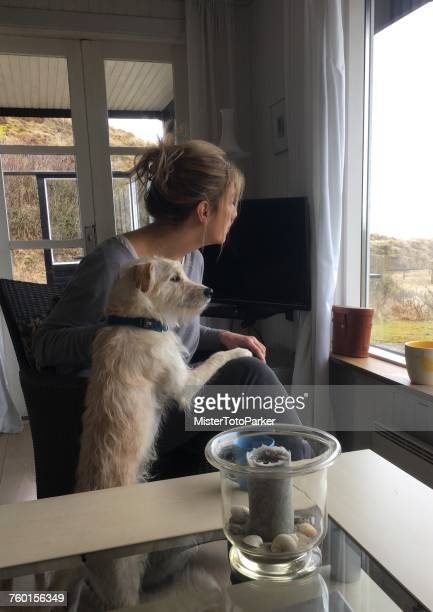 woman and dog looking through a window - モバイル撮影 ストックフォトと画像