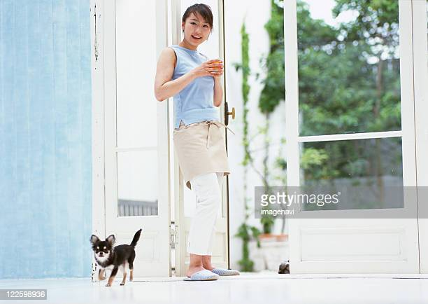 woman and dog - long haired chihuahua stock photos and pictures