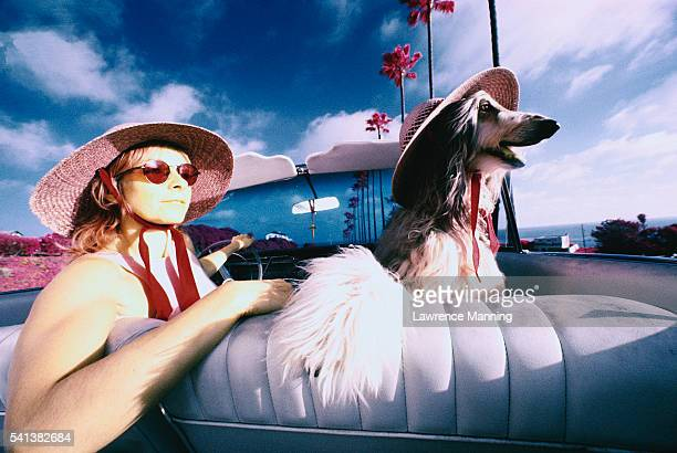 Woman and Dog Wearing Hats in Convertible