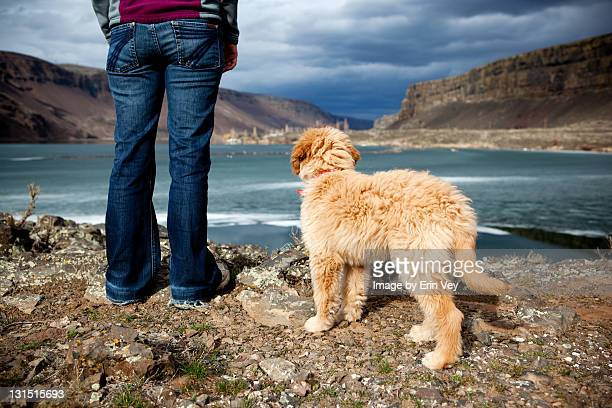 Woman and golden doodle puppy