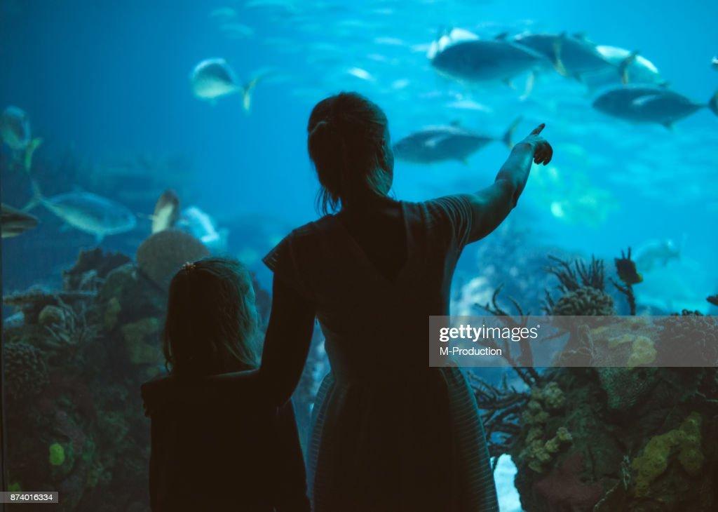 Vrouw en haar dochter in het aquarium. : Stockfoto