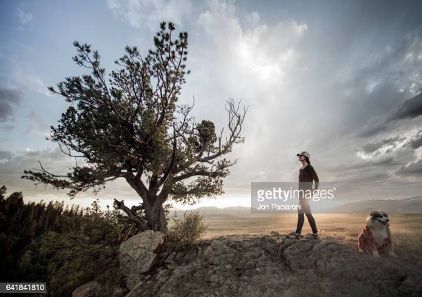 Woman and her Dog Admiring a Bristlecone Pine in the San Luis Valley
