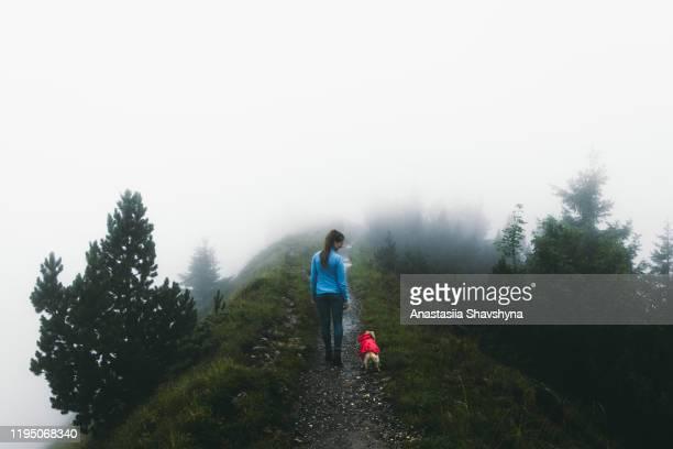 frau und ihr hund wandern in den schweizer alpen an nebligen regnerischen sommertag - junge frau allein stock-fotos und bilder
