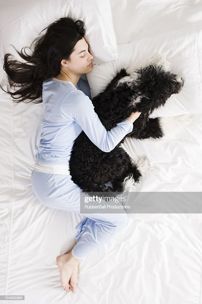 woman and her dog in bed : Stock Photo