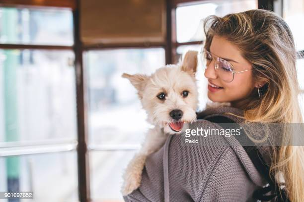 woman and her dog in tram - personal accessory stock pictures, royalty-free photos & images