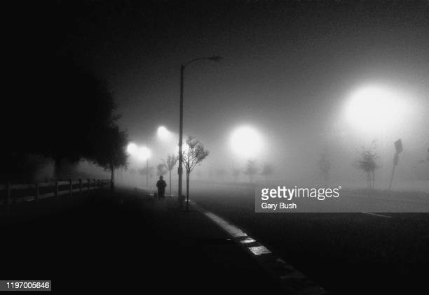 a woman and her dog on a fog laden boulevard in los angeles - calabasas stock pictures, royalty-free photos & images