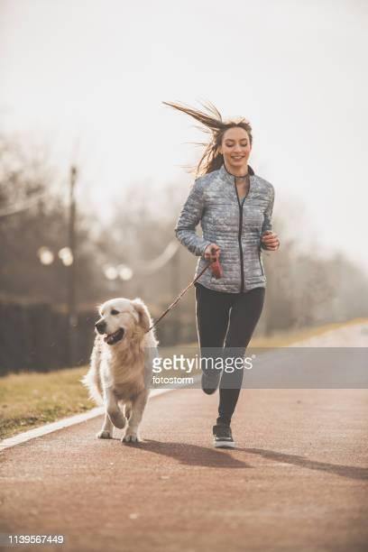 frau und ihr hund trainieren zusammen - hairy woman stock-fotos und bilder