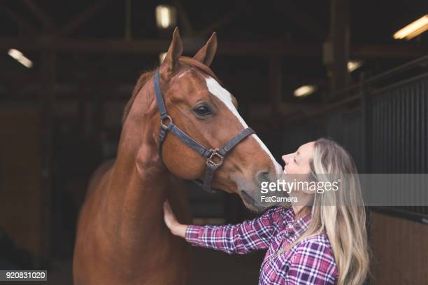 a woman and her horse - horse stock pictures, royalty-free photos & images