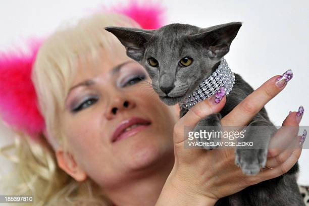 Woman and her Oriental Shorthair cat pose during a cat exhibition in Bishkek on October 20, 2013. Cat lovers from Kyrgyzstan, Kazakhstan and...