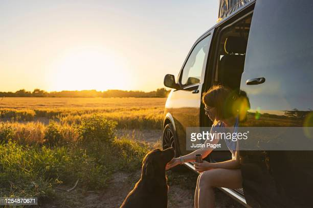 woman and her pet dog at sunset - rural scene stock pictures, royalty-free photos & images