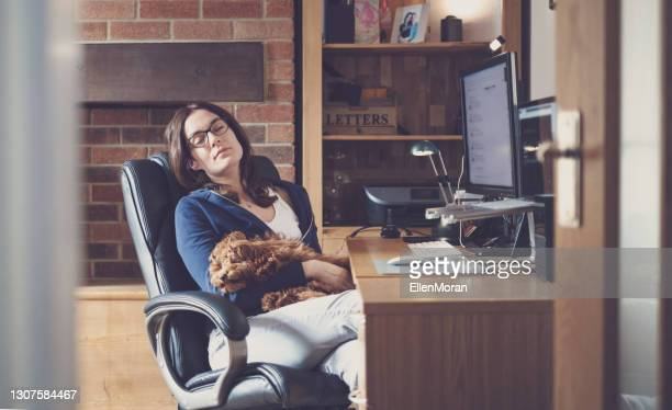 a woman and her puppy are having a nap. - politics and government stock pictures, royalty-free photos & images