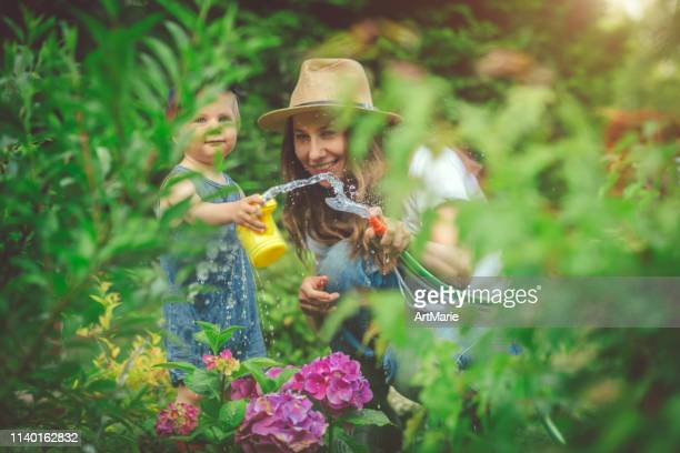 woman and her son gardening in the domestic garden at sunny day - domestic life imagens e fotografias de stock