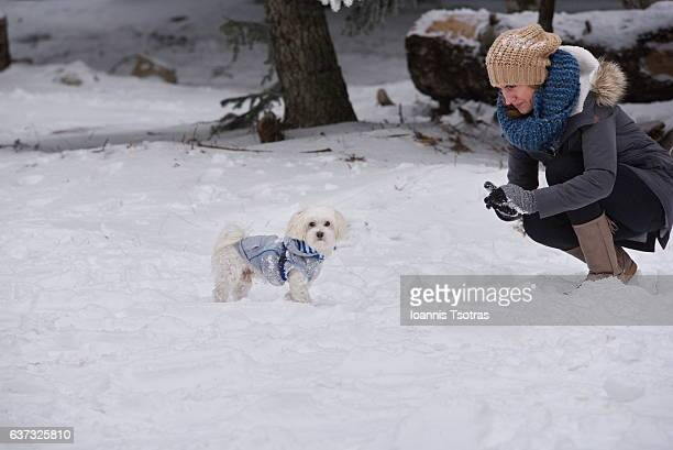 Woman and Maltese dog in the snow