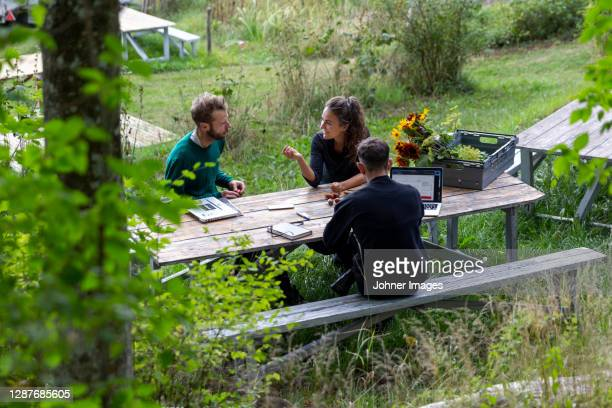 woman and men at picnic bench - three people stock pictures, royalty-free photos & images