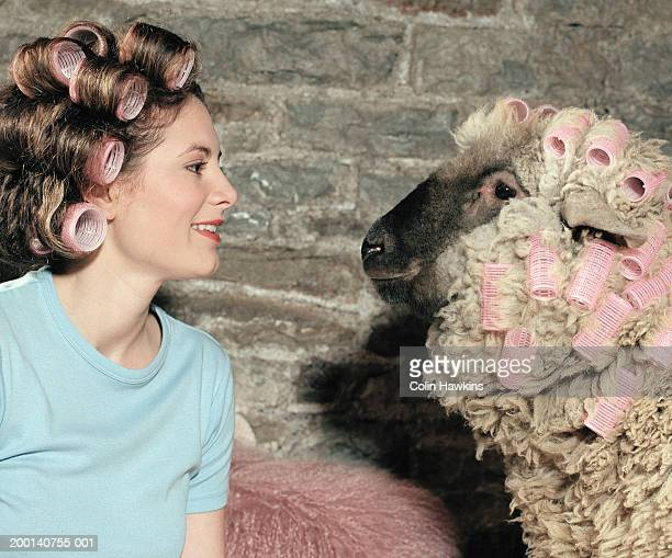 Woman and sheep wearing rollers on heads, side view