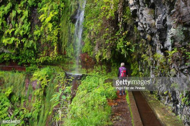 woman and waterfall in levada del rey -kings walk- são jorge -madeira island- portugal - madeira island stock photos and pictures