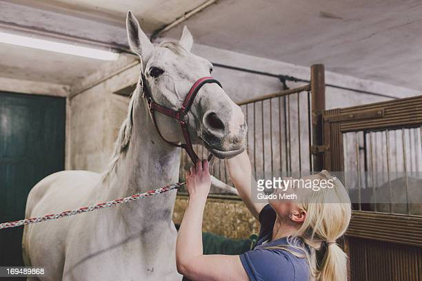 Woman and white horse in stable