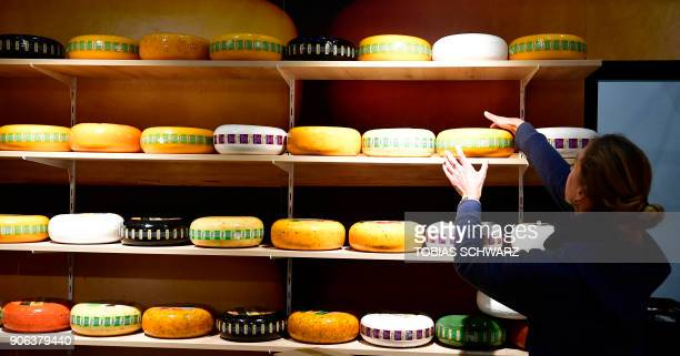 A woman arranges loaves of cheese on a shelf at the booth of the Netherlands before the opening day of the International Green Week agricultural fair...