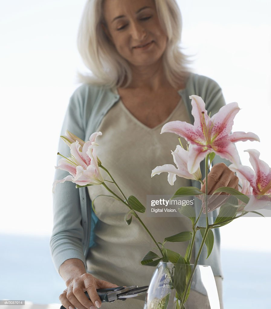 Woman Arranging Flowers in a Vase : Stock Photo