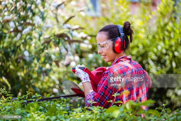 woman arranging hedge in the garden - hedge stock pictures, royalty-free photos & images
