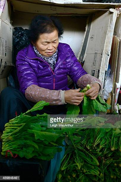 CONTENT] A woman at a small town South Korean street market is separating and preparing spinach to be sold at her stand in the afternoon on Saturday...