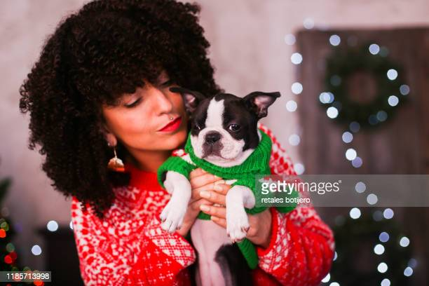 woman at home with her puppy at christmas time - pampered pets stock pictures, royalty-free photos & images