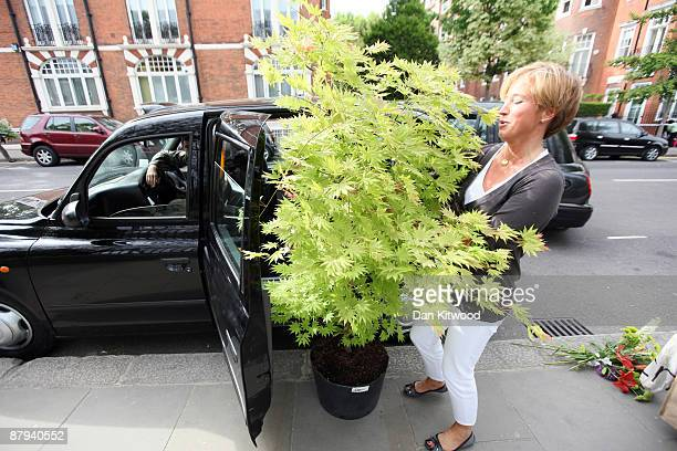 A woman attempts to get a tree purchased on the last day of the Chelsea Flower Show in a taxi on May 23 2009 in London The Royal Horticultural...
