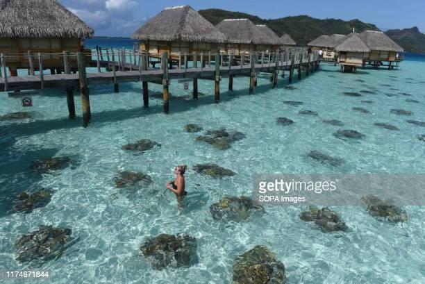 Woman bathing in the aqua-centric luxury Bora Bora Pearl Beach Resort & Spa resort. Bora Bora is a volcanic island of French Polynesia, in the...